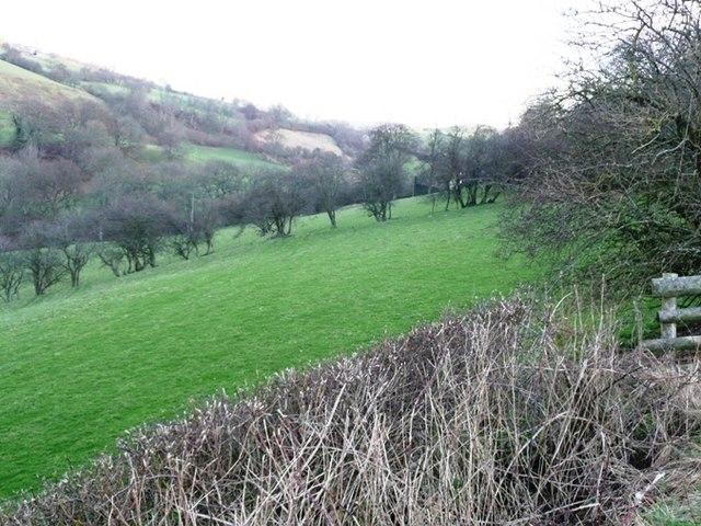 Edw valley