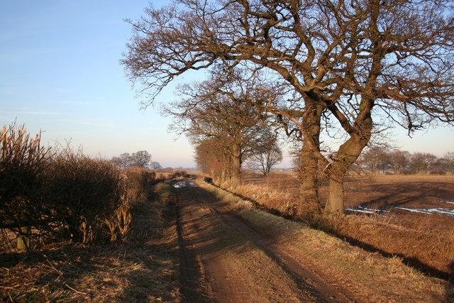 Wheatholme Lane