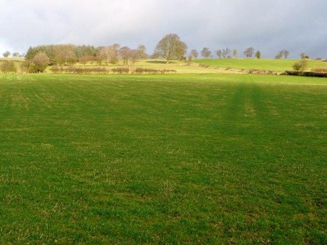 Farmland east of Painscastle