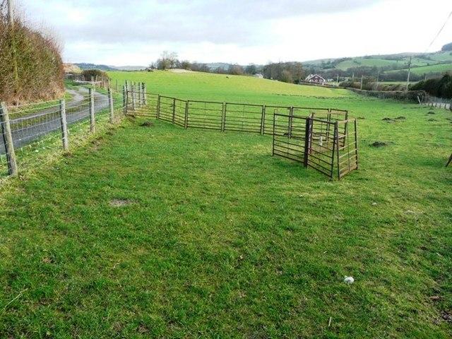 Pasture near Rhos-goch