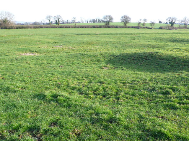 Field markings near Pulham, Dorset