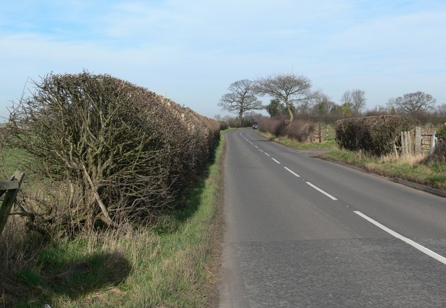 Twycross Road north of Sheepy Magna