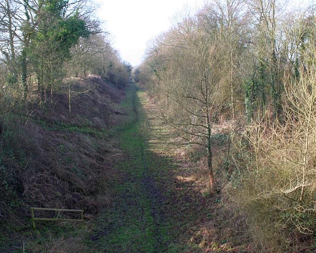 Brotheridge Green Railway Line Nature Reserve