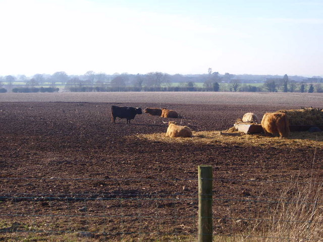 Ellerdine Grange Farm