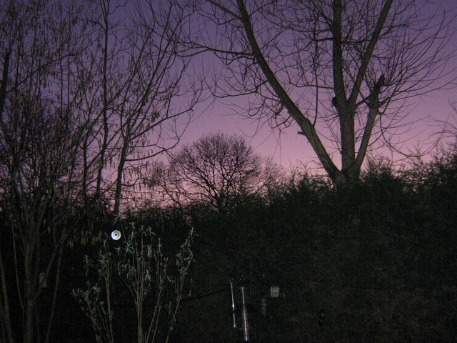 Dawn in Brimmers Hill