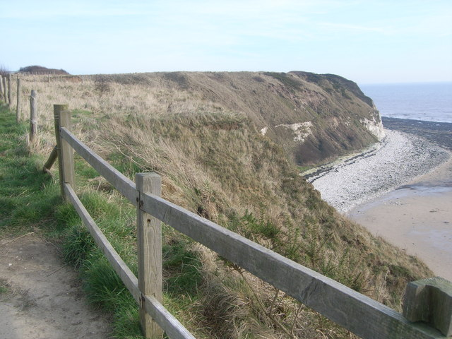 Looking northwards along coast