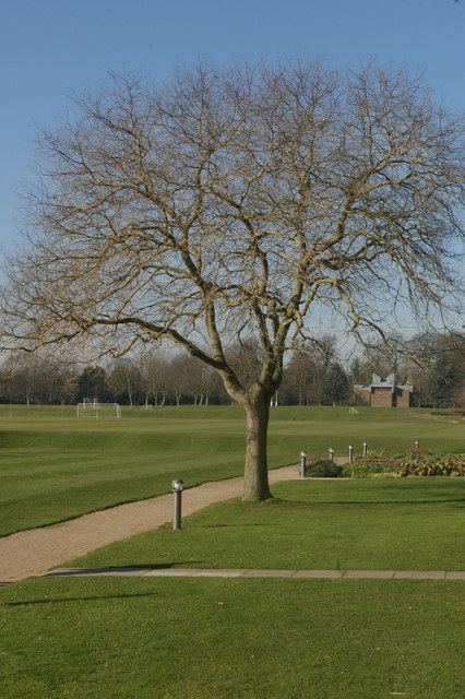 View across Churchill College playing fields
