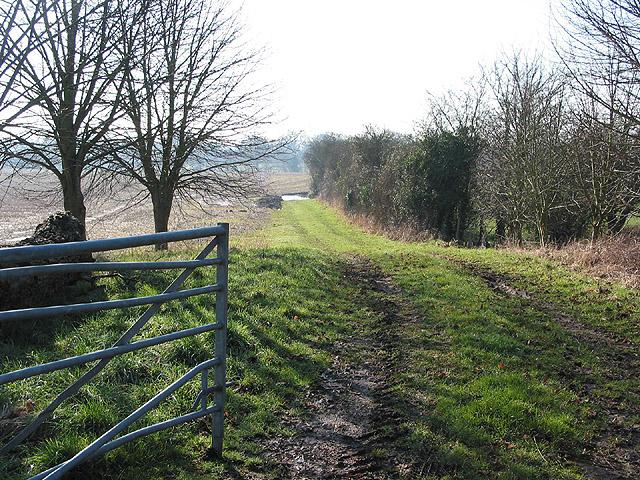 Farm track near Malswick