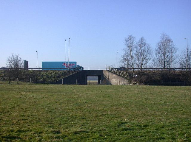 Tunnel or bridge?
