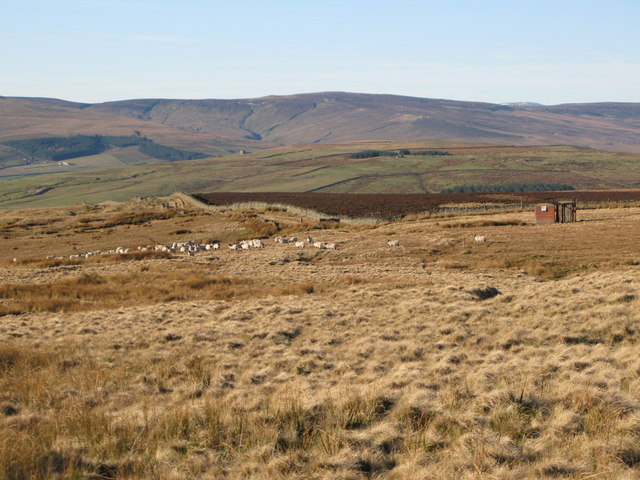 Moorland beyond the end of Red Road