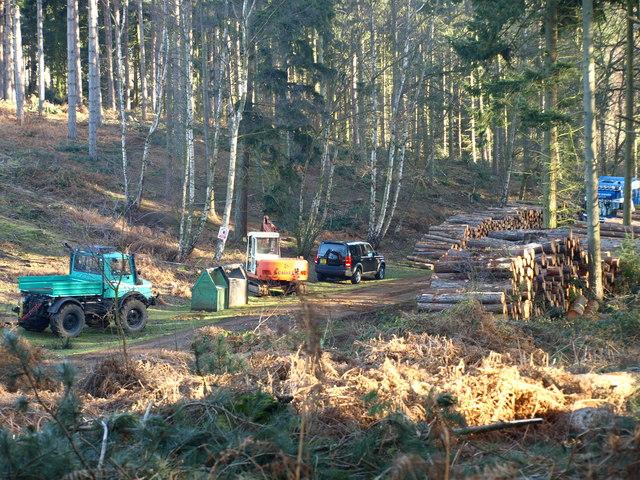 Logging Operation 1