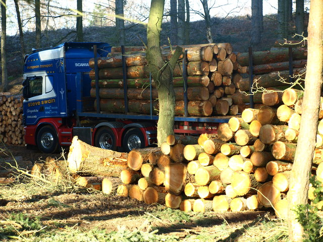 Logging Operation 2