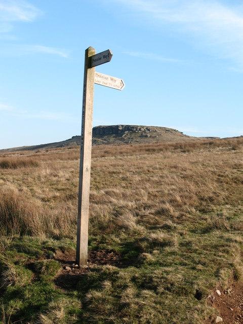 Pennine Way & Goldsborough