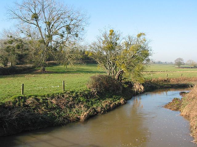 The River Leadon from Wedderburn Bridge