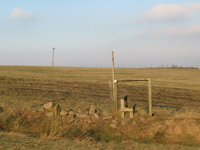 Footpath across pasture near Low Acton (2)