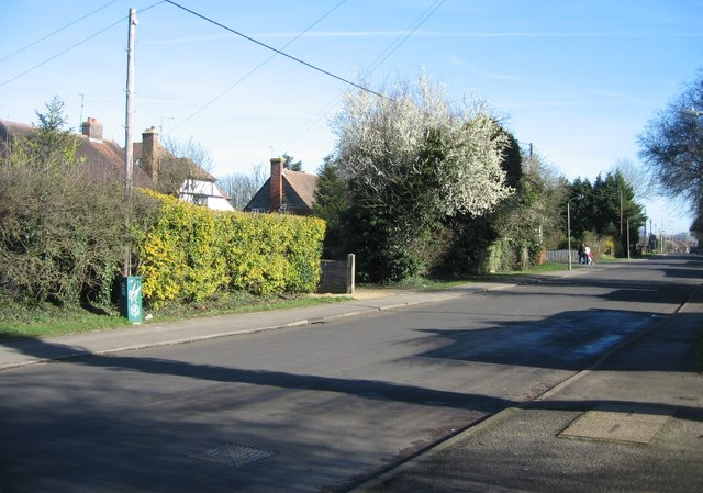 Old Worting Road