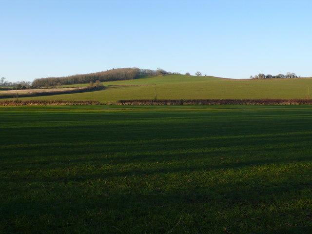 Highmores Hill near Oborne, Dorset