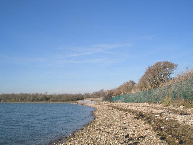 Coastline near the sewage works