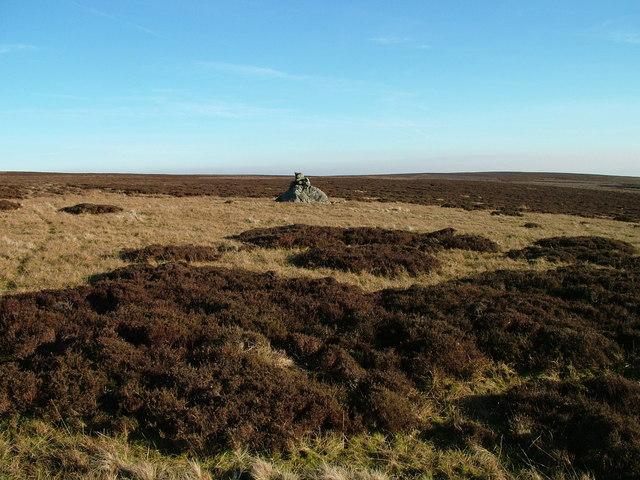 Currick on Monk's Moor
