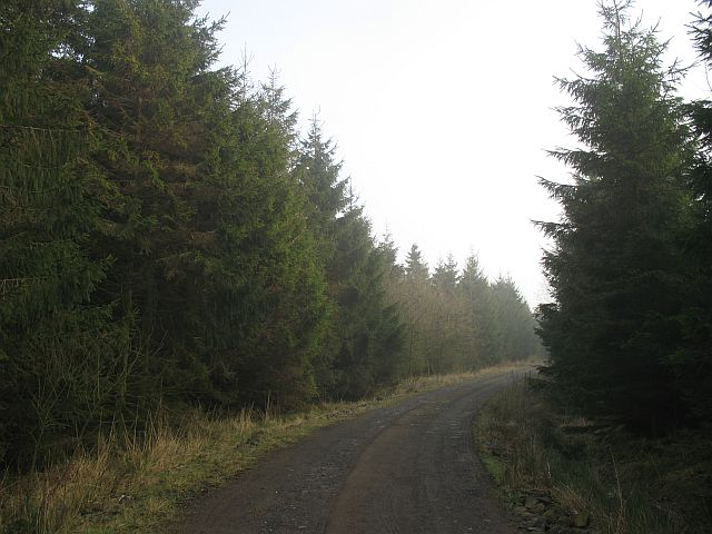 Road to Muckersies Knowes