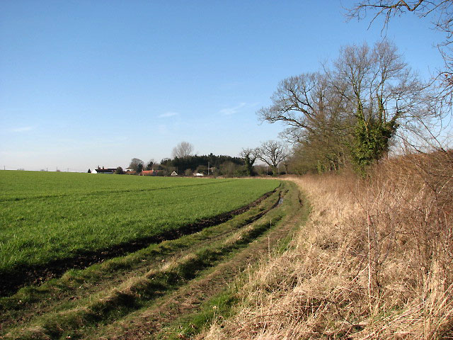 View west along field boundary