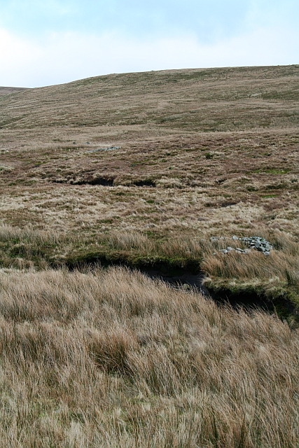 Old Grouse Butts on Blea Moor