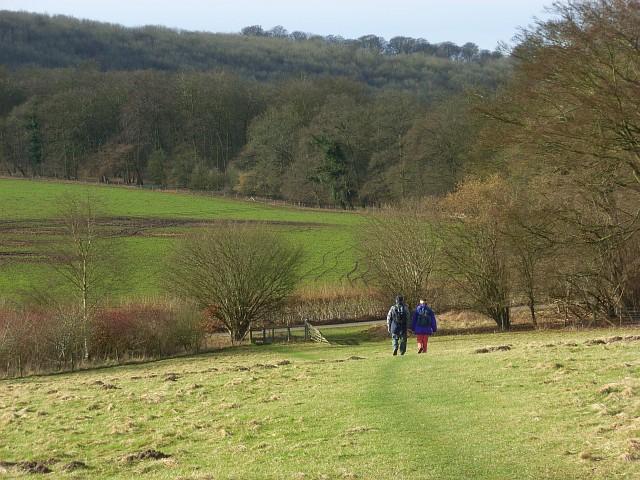 Pasture and woodland below Northend
