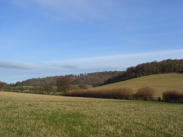 A valley below Ibstone