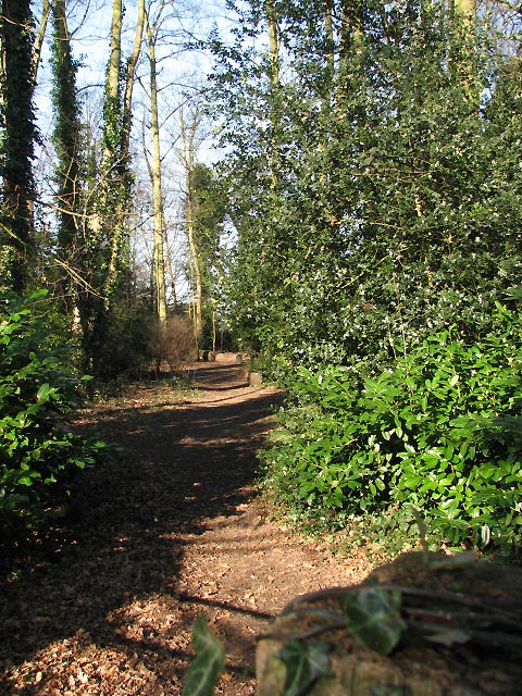 Path through Key's Hill Wood