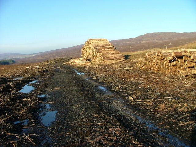 Logs Awaiting Uplift