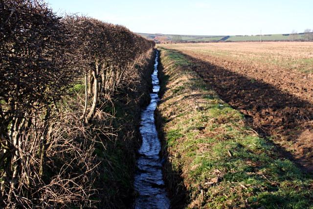 Field-edge Ditch