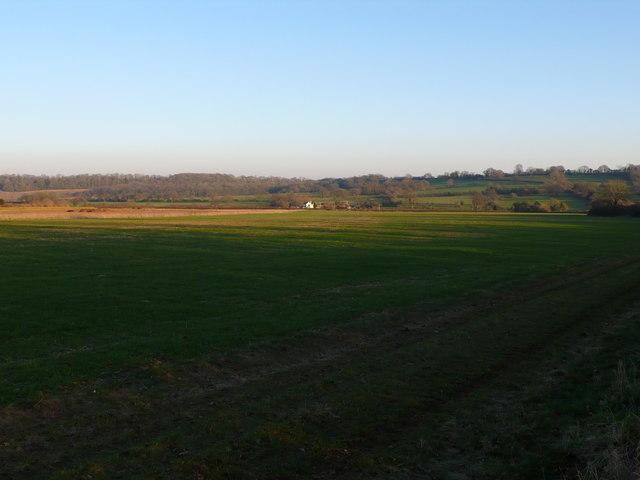 View to Tripps farm near Purse Caundle