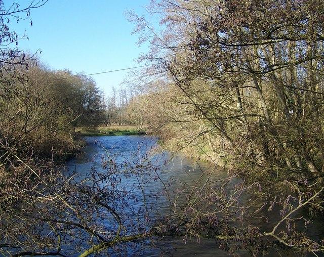 River Nadder near Dinton