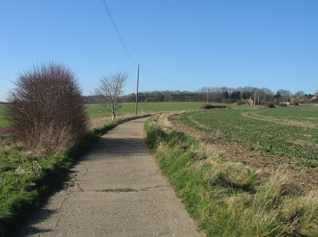 Farmland & Worting Wood