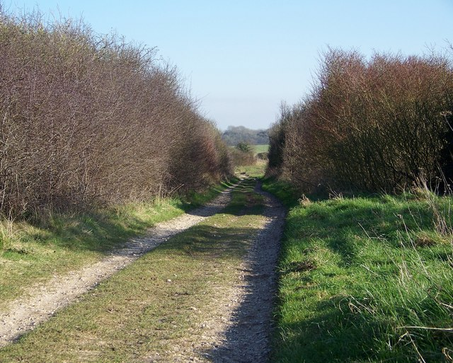 Byway towards Great Yews