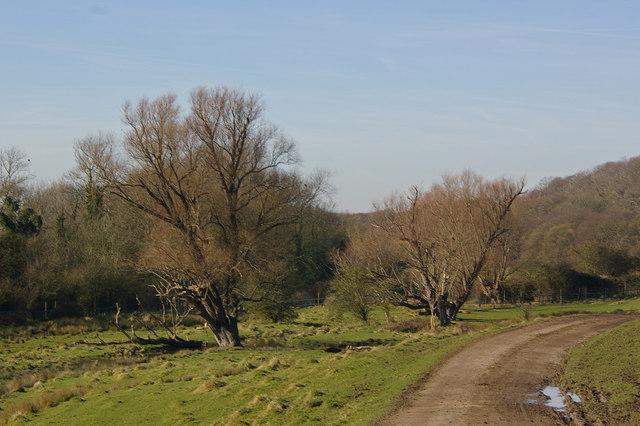 The start of Romney Marsh at Port Lympne