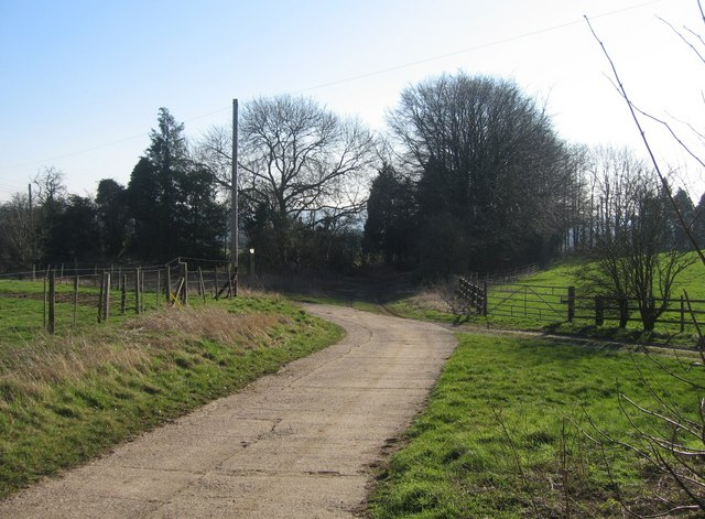 Farm tracks - close to Worting Wood