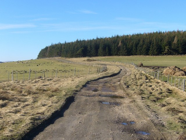 Farm track from Ladderfoot to Chapeltown