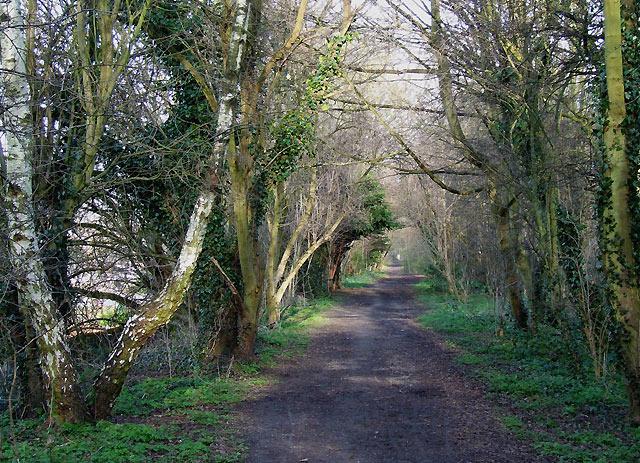 Course of old Railway, near Claregate, Wolverhampton