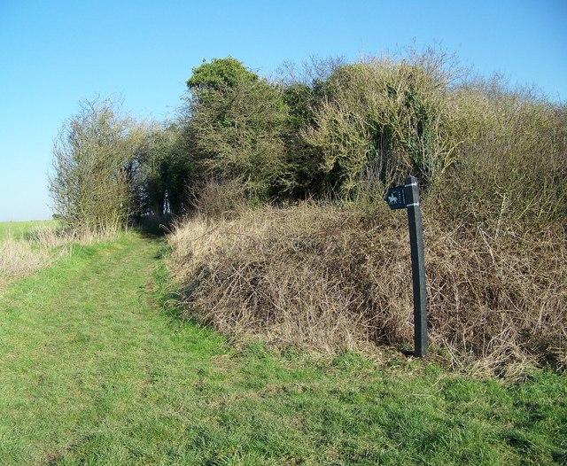 Bridleway towards Great Yews