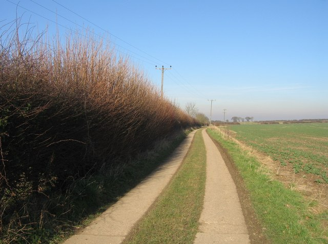 Track to Worting Wood Farm