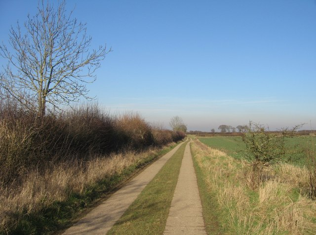 Worting Wood Farm - access track