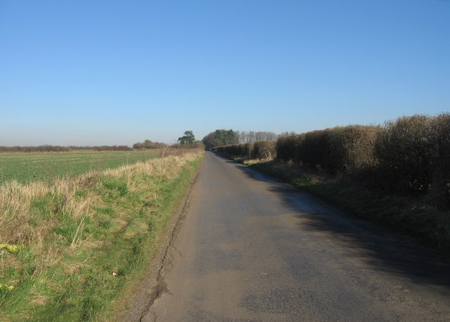 Looking towards the Kingsclere Road