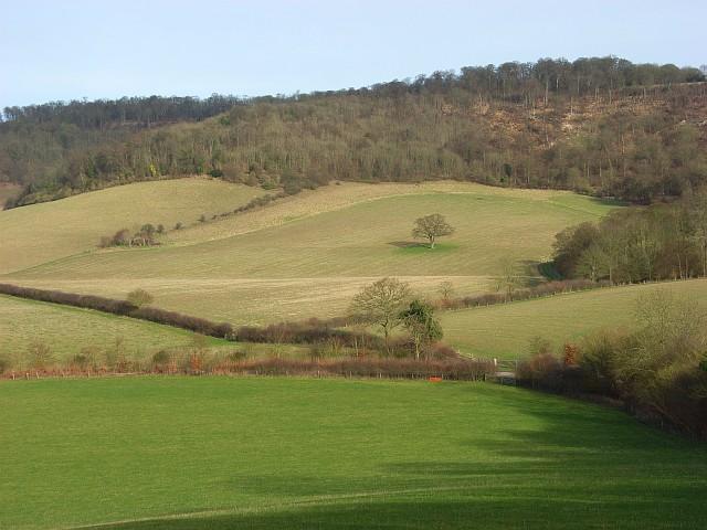 Pastures below Northend