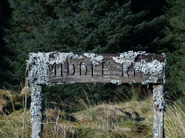 Forestry sign, Middle Rig