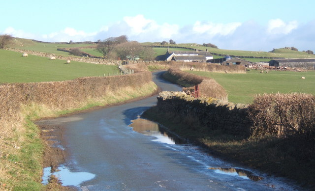 Lane towards Beck Farm near Millom
