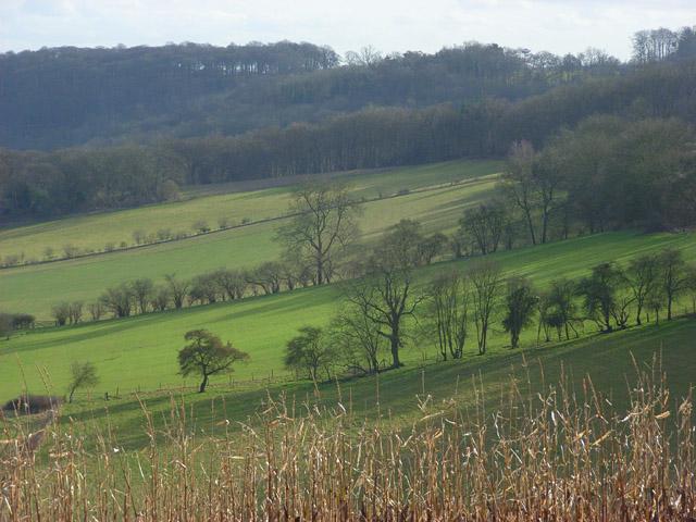 Hillside below Northend