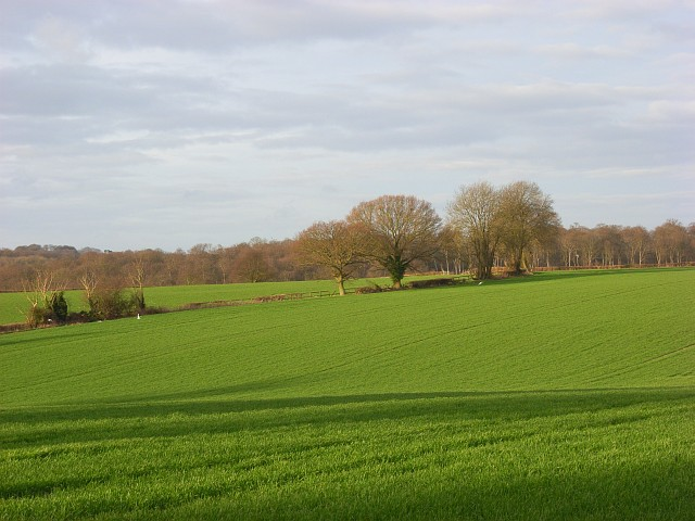 Farmland near Marlow