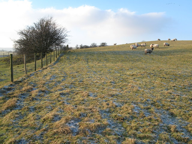 Pastures near Pry Hill (2)
