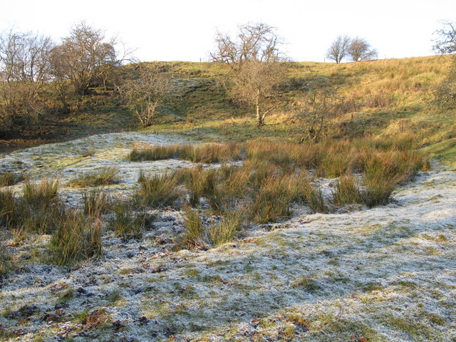 Frosty ground near Acton Burn